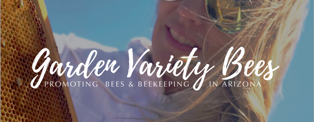 Checking Bees Banner